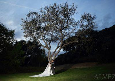 novios bajo árbol del jardín