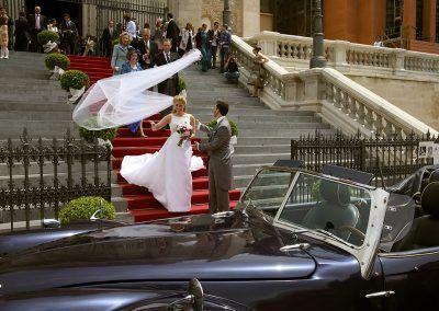 a la novia se le vuela el velo.