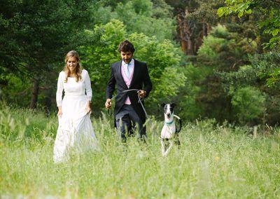 foto bodas mascota madrid